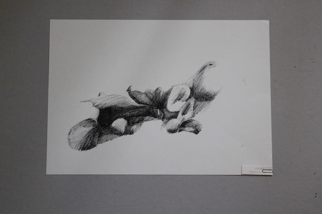 Stillleben - Fläche, Tusche auf Papier, 80-er Jahre, 41 x 30