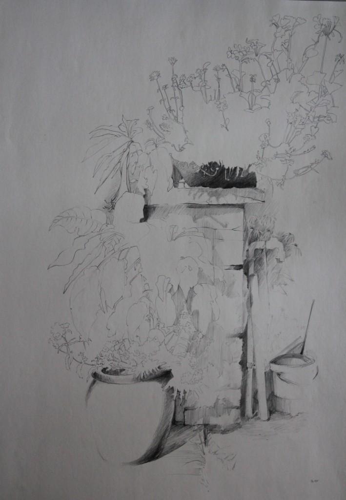 Blumen im Garten, Bleistift auf Papier, 1981, 42 x 59