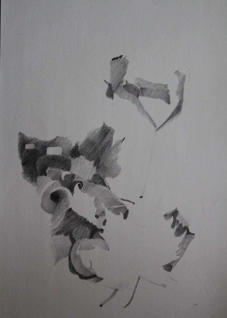 Stillleben mit Blättern, Bleistift auf Papier, 1981, 42 x 59