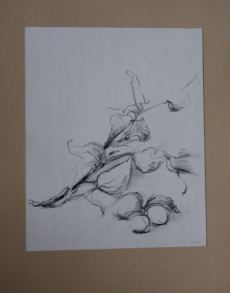 Stillleben mit Kastanien, Bleistift auf Papier, 1981, 29 x 35