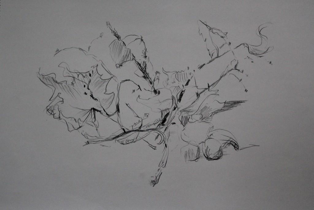 Stillleben, Bleistift auf Papier, 80-er Jahre, 56 x 42