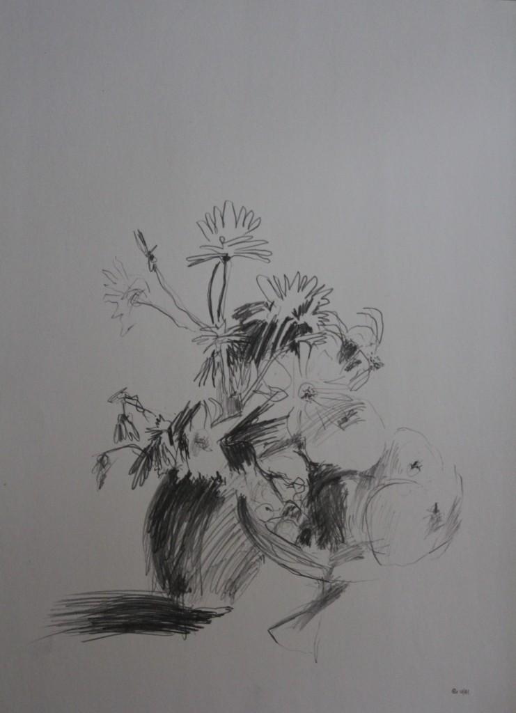 Stillleben mit Blumen und Früchten, Bleistift auf Papier, 1981, 41,5 x 58,5
