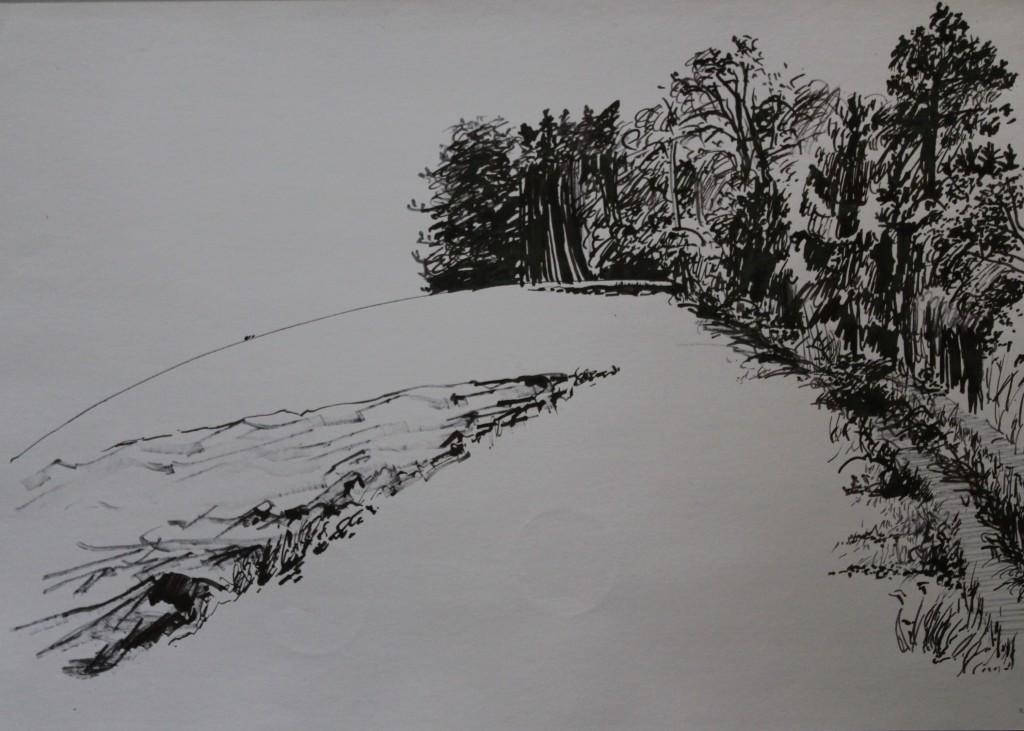 Waldlichtung, Rohrfeder/Tusche auf Papier, 1982, 59 x 42