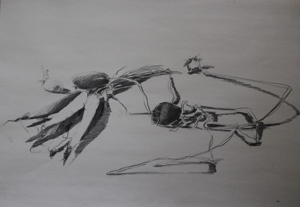 Stillleben mit Möhren, Bleistift auf Papier, 1981, 59 x 42