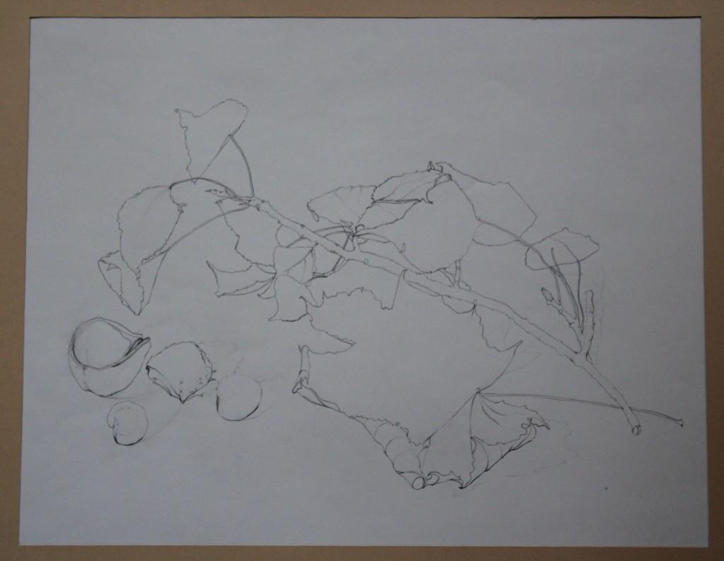 Stillleben mit Ast, Bleistift (Binnenzeichnung) auf Papier, 80-er Jahre, 46,5 x 37