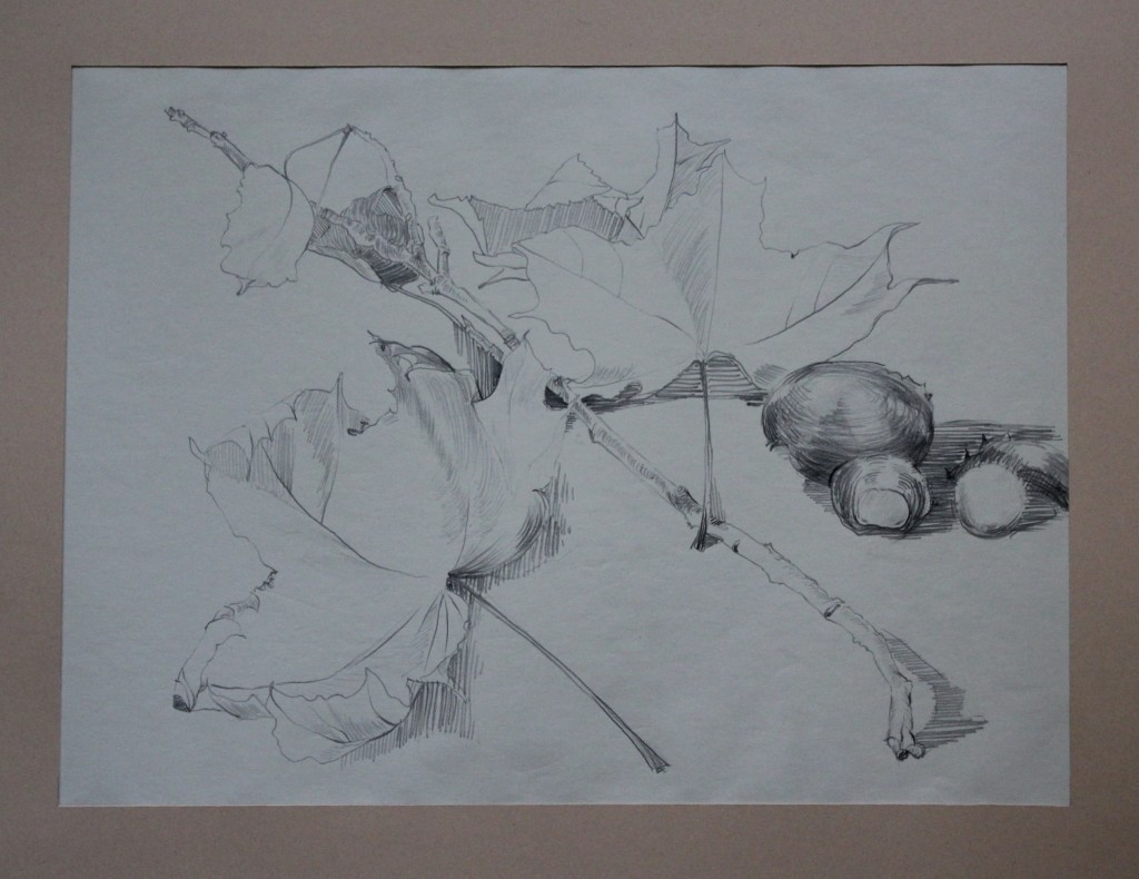 Stillleben mit Ast, Bleistift (Linie) auf Papier, 80-er Jahre, 40,5 x 30
