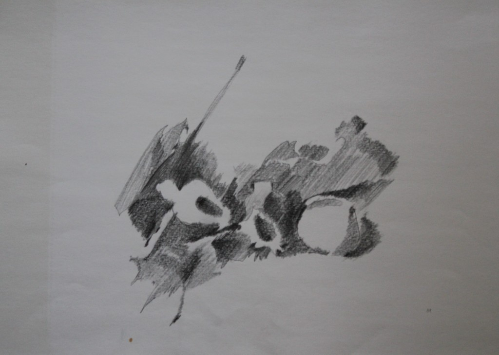 Stillleben, Bleistift auf Papier, 1981, 59 x 42