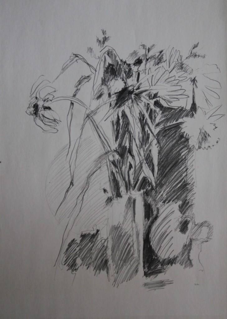 Blumenstillleben, Bleistift auf Papier, 1981, 42 x 59,5