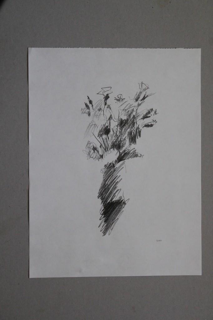 Blumen, Bleistift auf Papier, 1981, 29,7 x 39,7