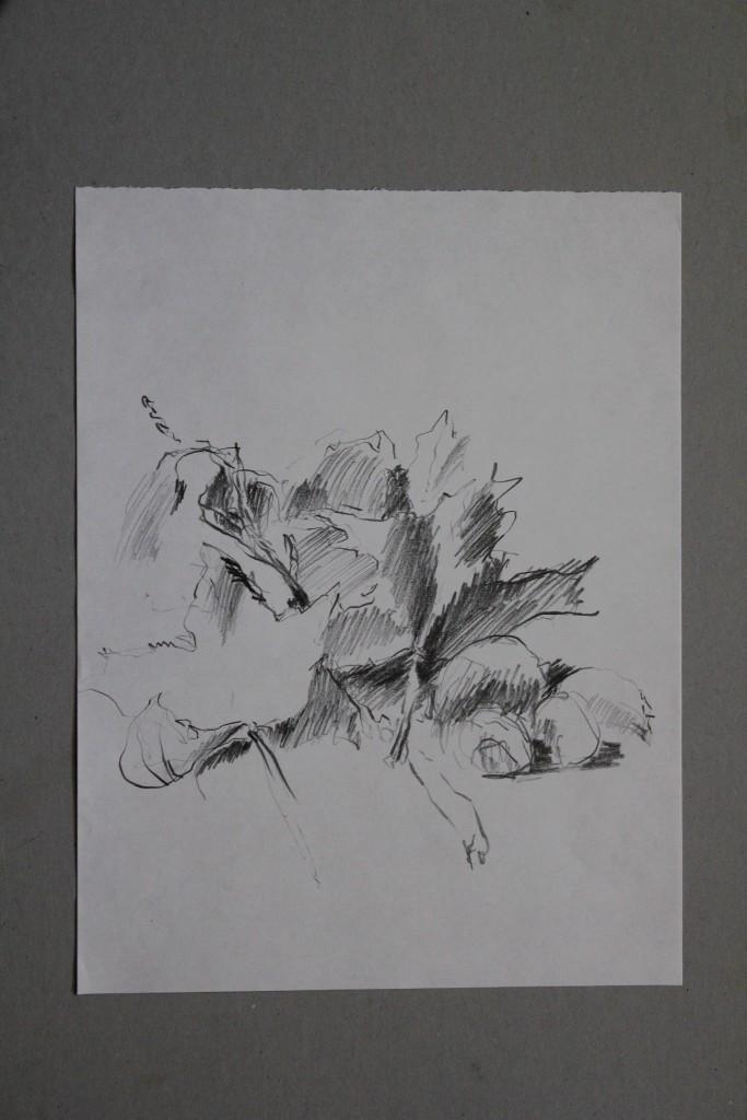 Stillleben, Bleistift auf Papier, 1981, 29,7 x 39,7