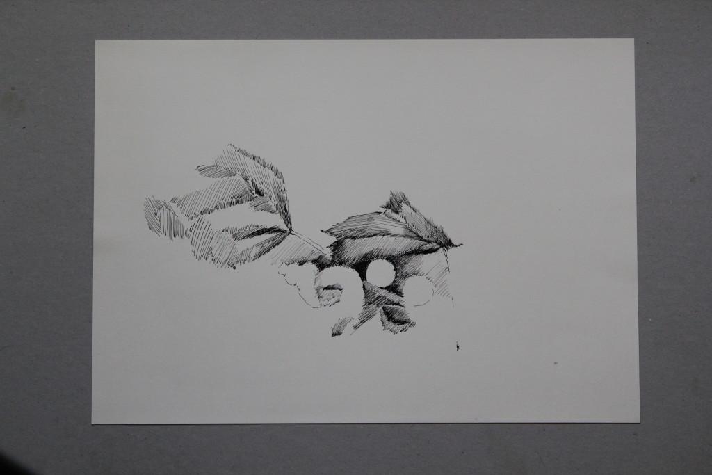 Stillleben, Feder/Tusche auf Papier, 1981, 42 x 29,7