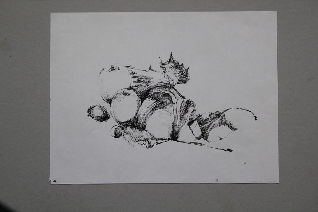 Stillleben, Feder/Tusche auf Papier, 1981, 39,5 x 29,5