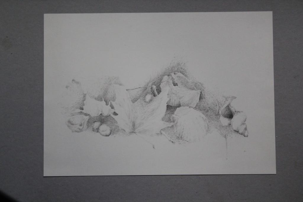 Stillleben, Bleistift auf Papier, 1981, 42 x 29,7