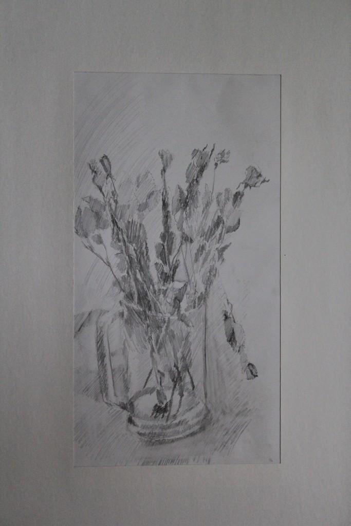 Rosen, Bleistift auf Papier, Anfang 80-er Jahre, 21,5 x 41,5
