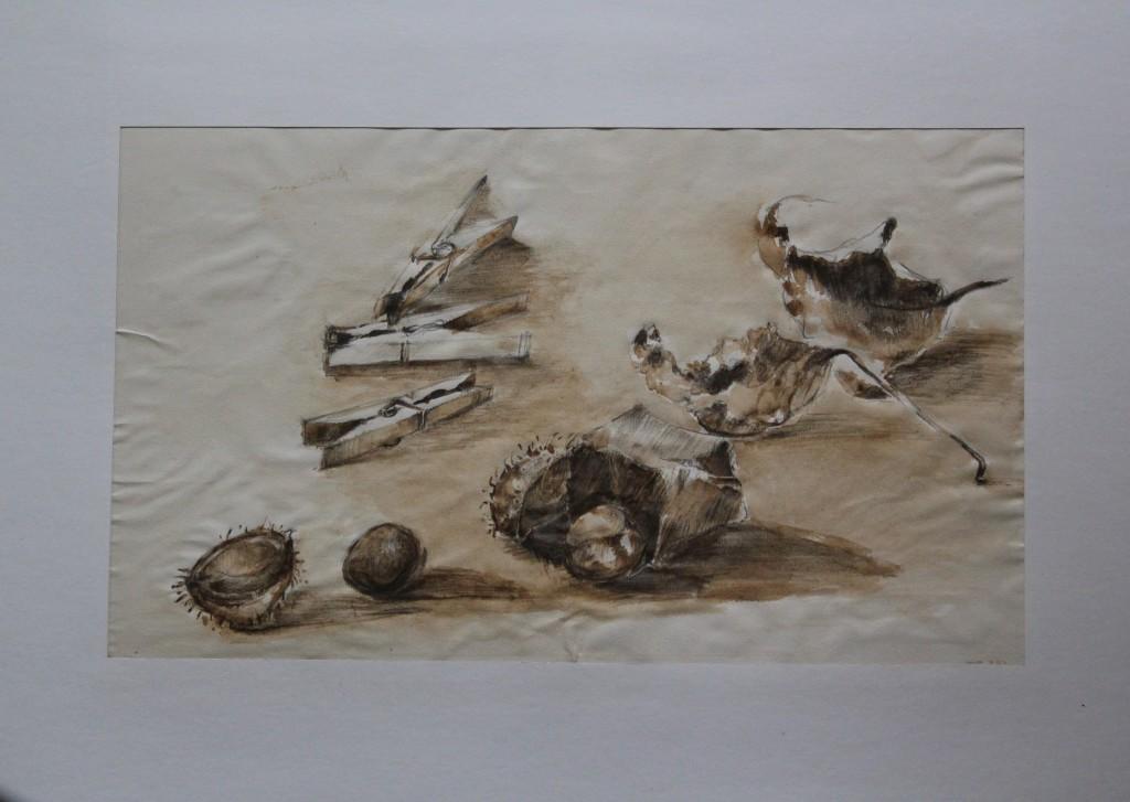 Stillleben mit Blättern und Wäscheklammern, Bleistift, Sepia auf Papier, Anfang 80-er Jahre, 40,5 x 24