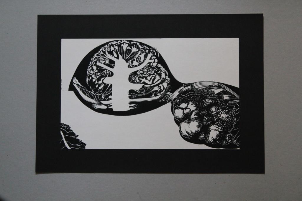 Blumenkohl, Feder/Tusche auf Papier, Anfang 80-er Jahre, 33 x 20,5
