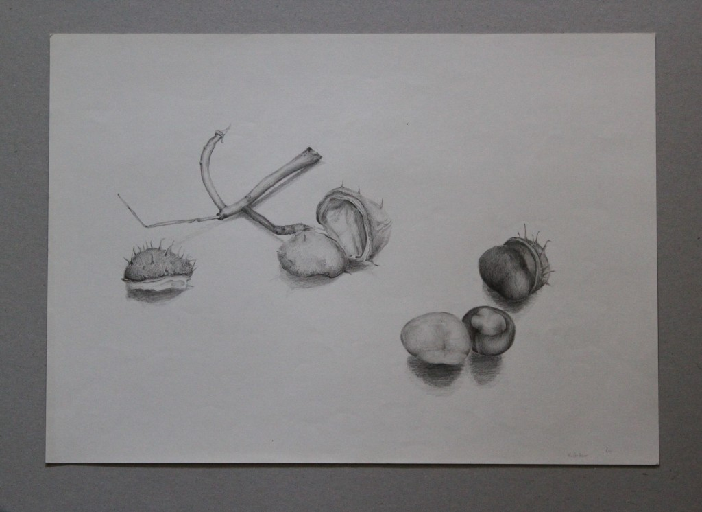 Kastanien, Bleistift auf Papier, Anfang 80-er Jahre, 42 x 29,7