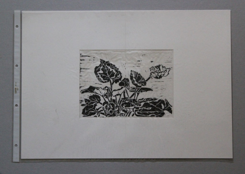 Alpenveilchen, Holzschnitt, Anfang 80-er Jahre, 18,5 x 14