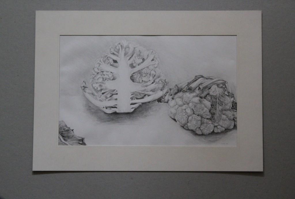 Blumenkohl, Bleistift auf Papier, Anfang 80-er Jahre, 32,5 x 20