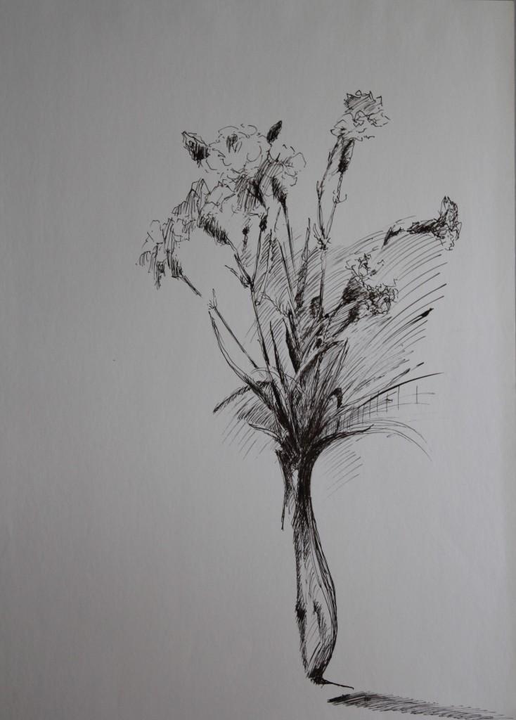 Nelken, Feder/Tusche auf Papier, Anfang 80-er Jahre, 42 x 59