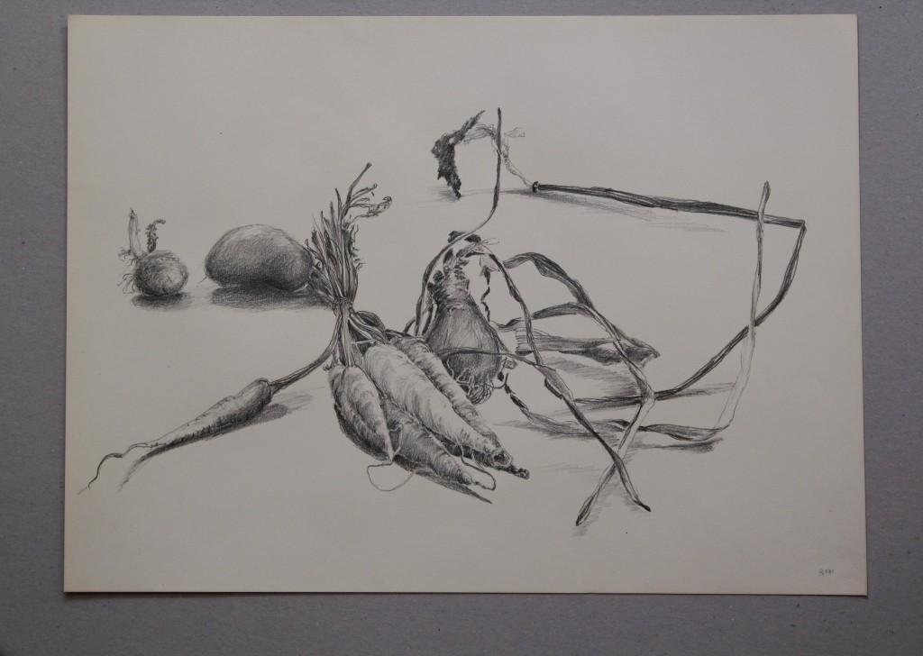 Gemüse, Bleistift auf Papier, 1981, 45 x 33
