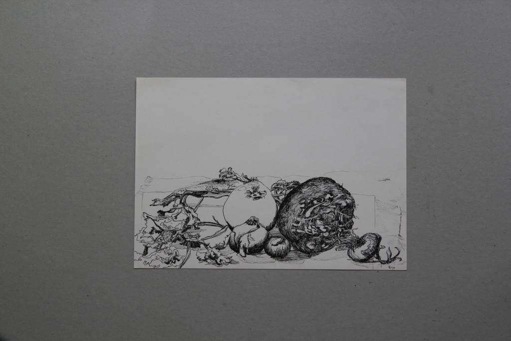Gemüse, Feder/Tusche auf Papier, 1979, 29,5 x 20,5