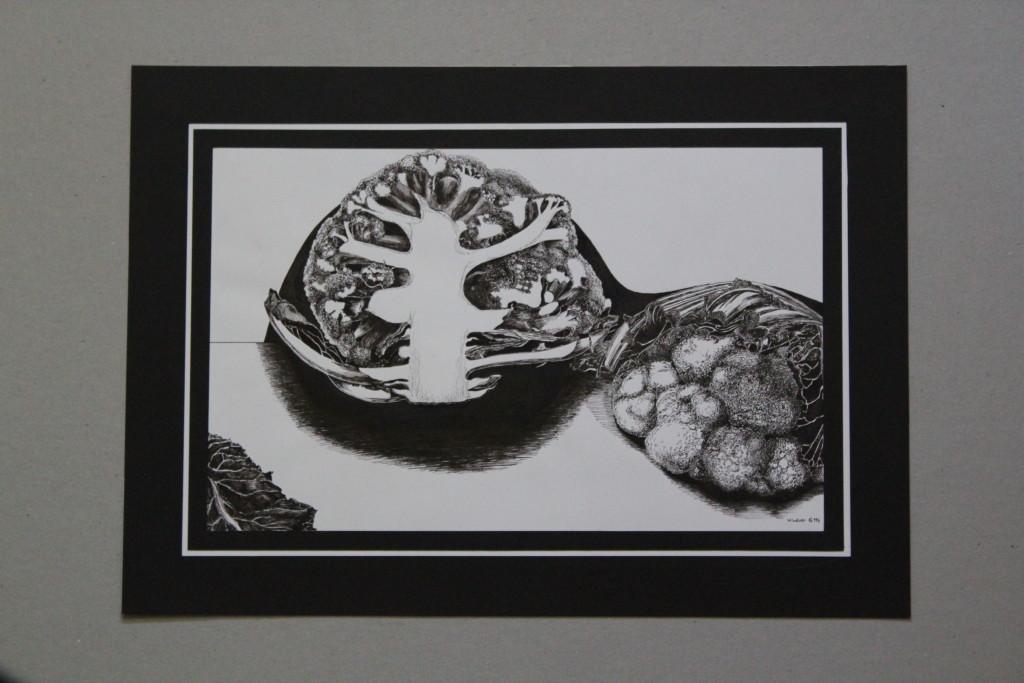 Blumenkohl, Tusche auf Papier, Anfang 80-er Jahre, 33 x 20,5