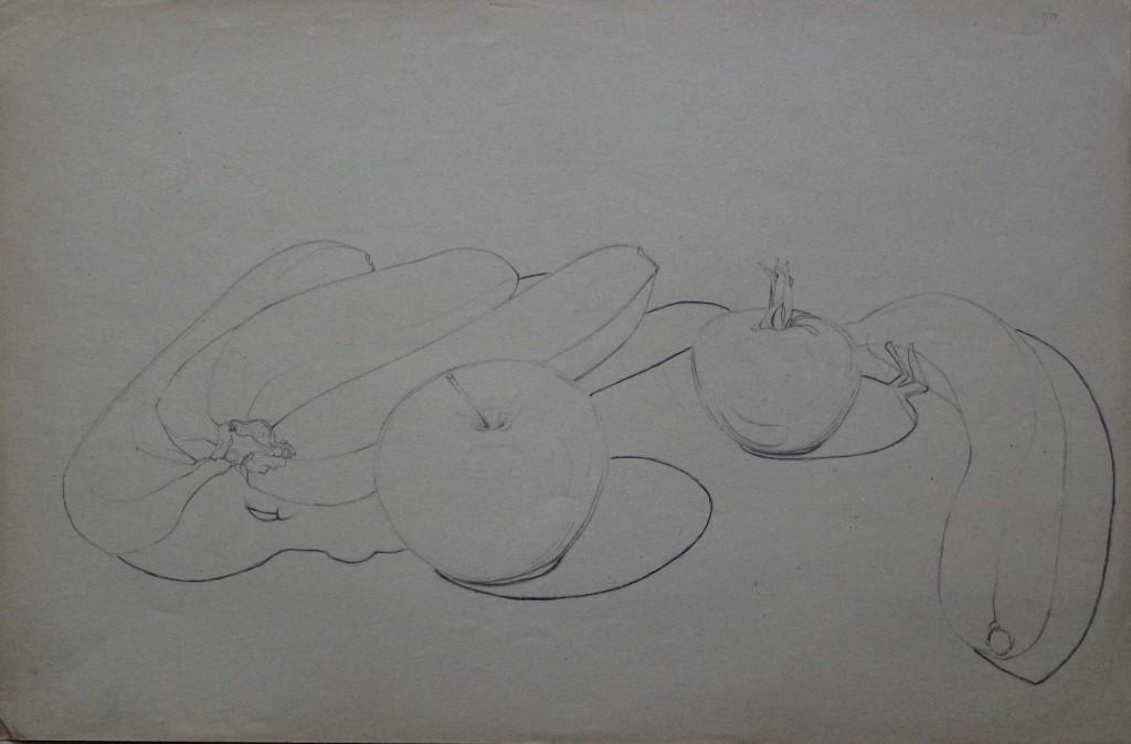 Früchte, Bleistift auf Papier, Anfang 80-er Jahre, 47,5 x 31,5